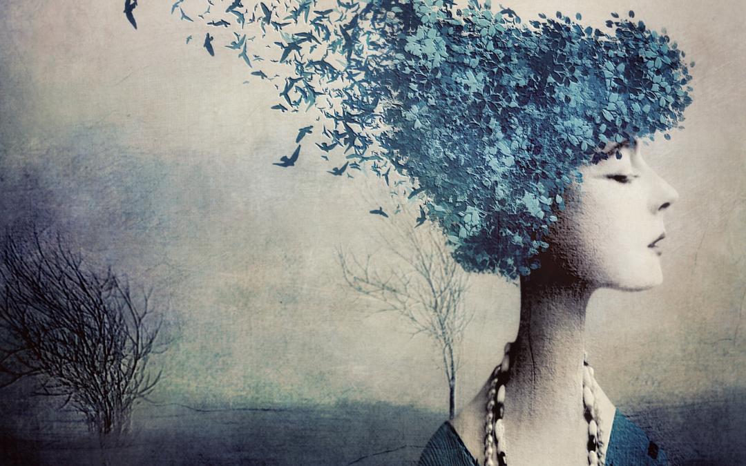 Anca Balaj ~ Imagination.