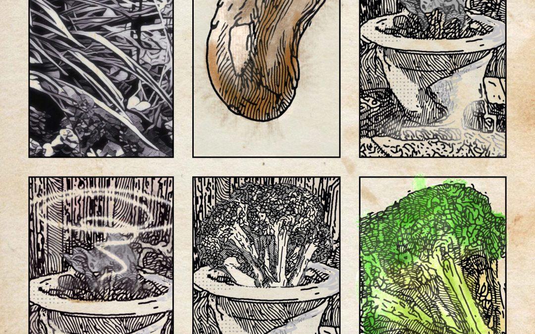 Jan Uiterwijk ~ A broccoli story