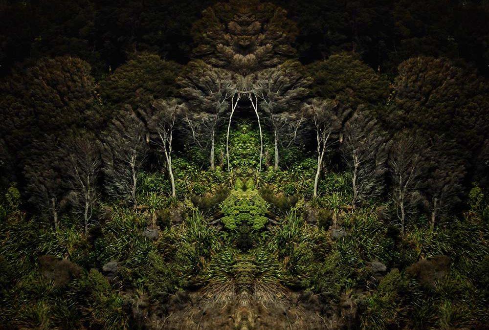 {en vedette} Leon Williams ~ The Sounds