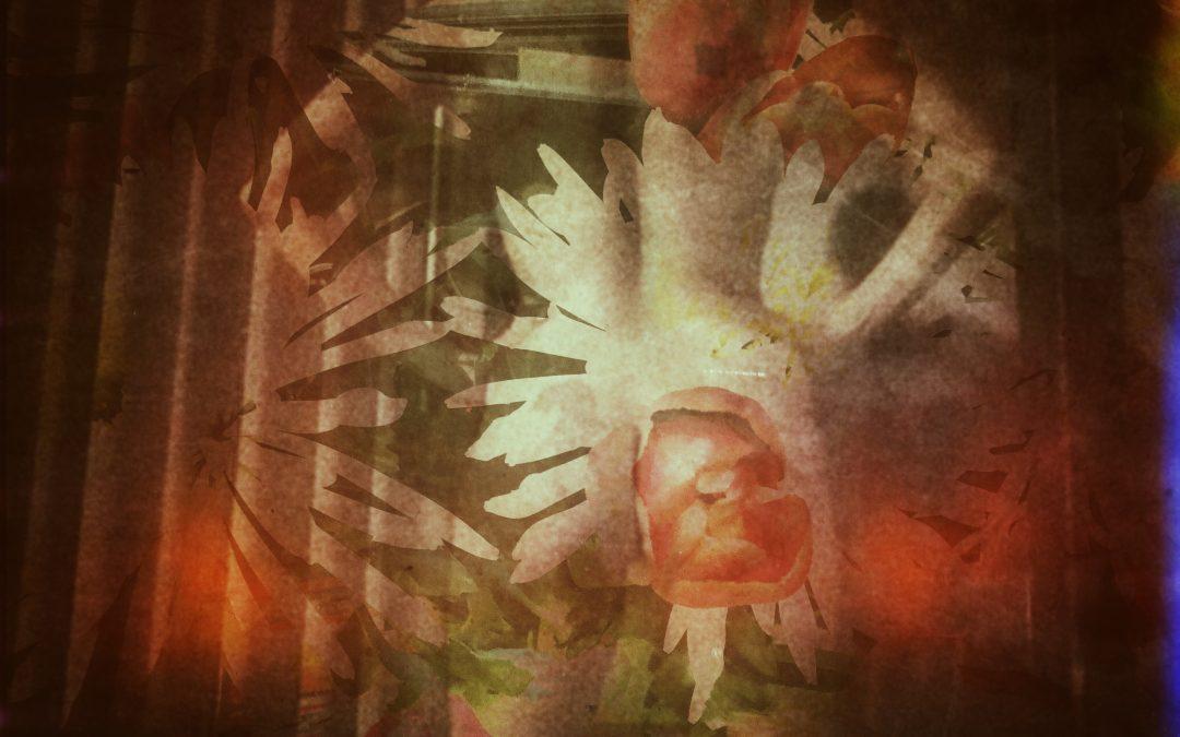 Jody Frost ~ Untitled