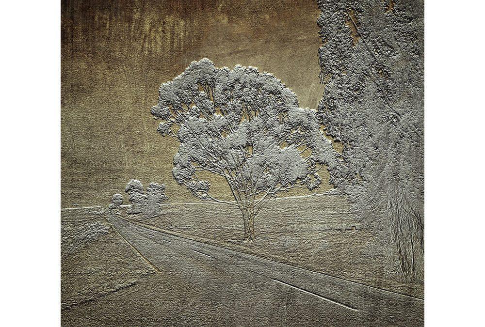 maria cecilia de são thiago ~ gallery 1