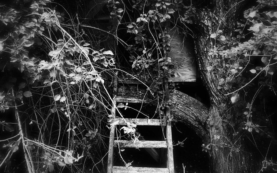 Meri Walker ~ She Found Herself a New Hideaway.