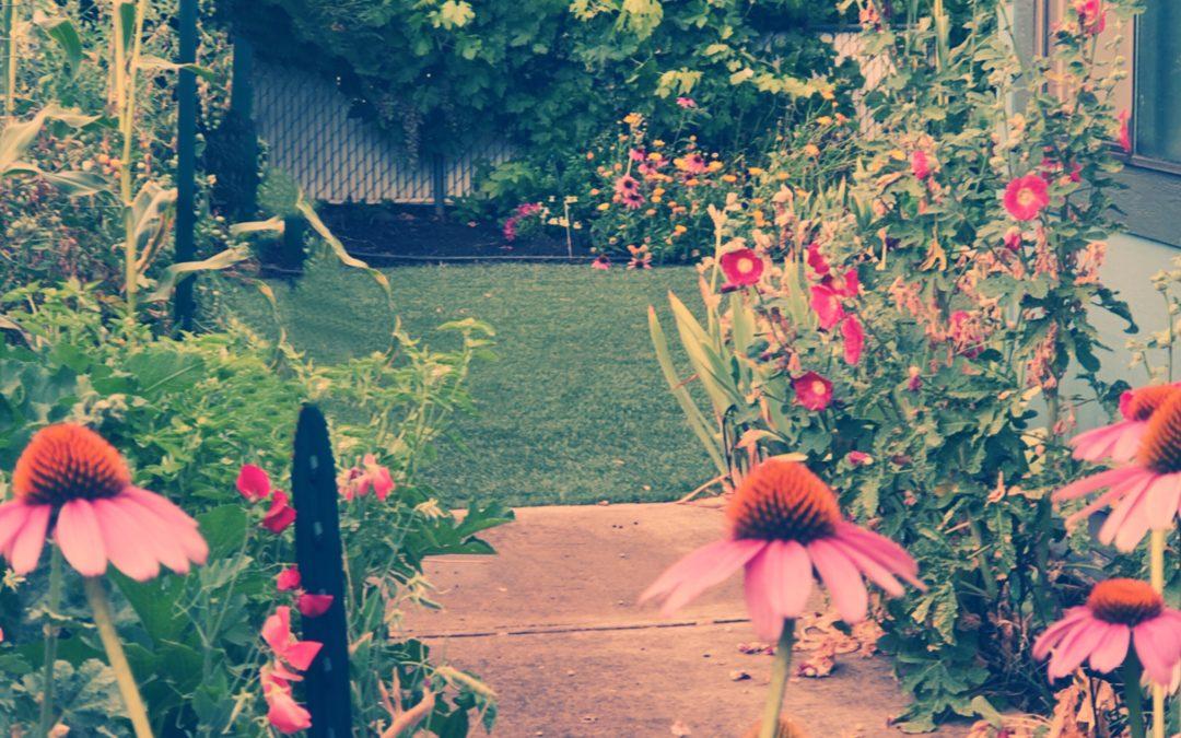 Meri Walker ~ Summer Sanctuary.