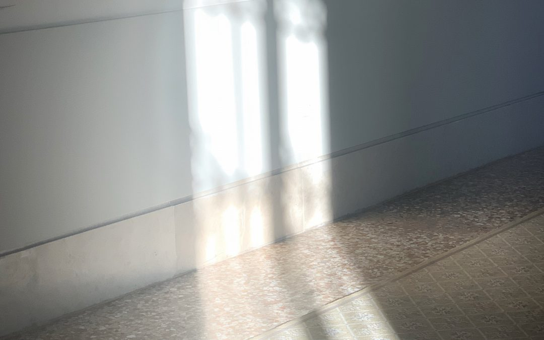 Maris Meyerson ~ San Clemente Palace