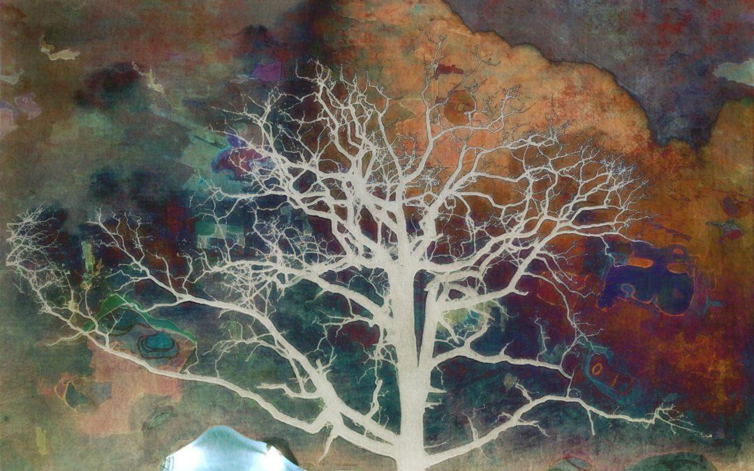 {en vedette} Barbara duBois ~ Alternative Landscape XCV