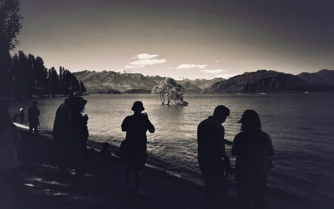 {sunday} Leon Williams ~ Quiet day at the worlds most photographed tree. Lake Wanaka, New Zealand.