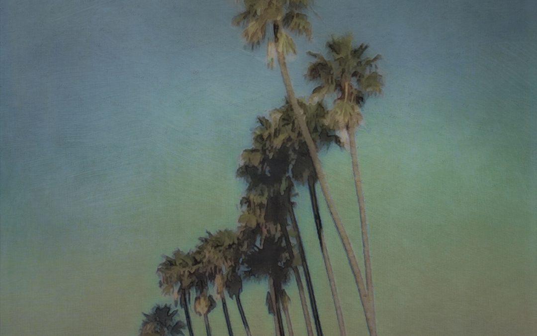 Barbara duBois ~ Palms