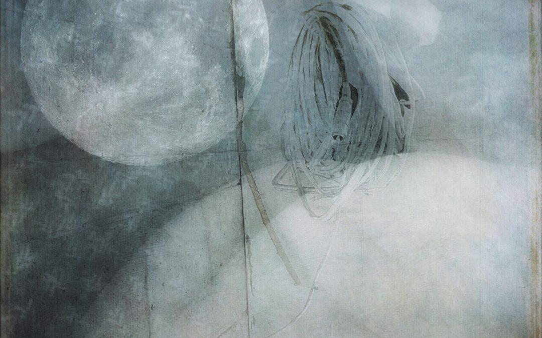 Barbara duBois ~ Tangled Up In Blue
