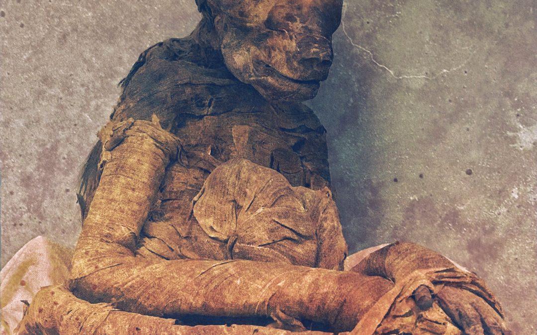 Damian De Souza ~ Mummified Monkey. Cairo Museum.