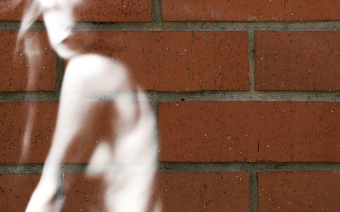 Lydia Davison Whitcomb ~ Brick series