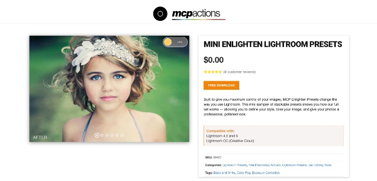 Mini Enlighten Natural Photo Presets