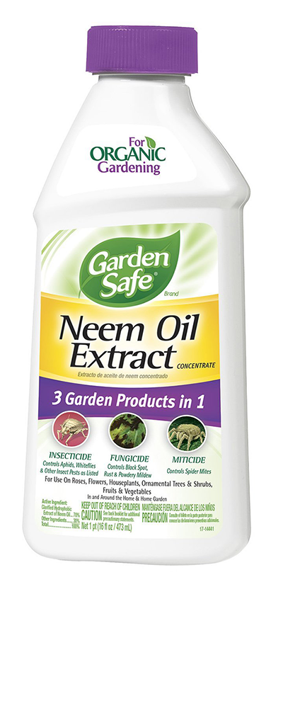 Neem Oil for Plants | Apartment Therapy