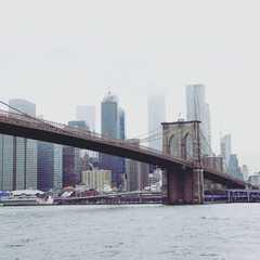 Dumbo   POPULAR Trips, Photos, Ratings & Practical Information