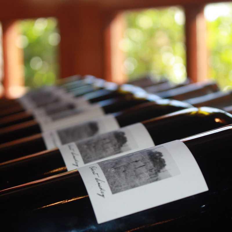 Wine Tasting at Robert Sinskey
