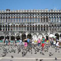 St. Mark's Square / Piazza San Marco - Photos by Real Travelers, Ratings, and Other Practical Information