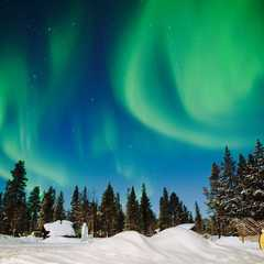 Aurora Village Oy   POPULAR Trips, Photos, Ratings & Practical Information