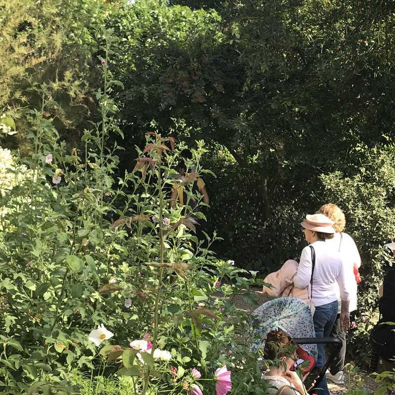 Maison & Jardins de Claude Monet