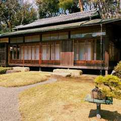 Meiji Jingu / 明治神宮