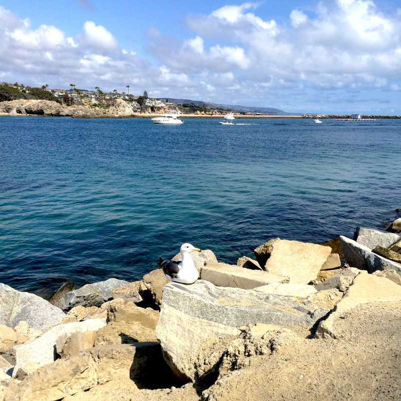 West Jetty View Park