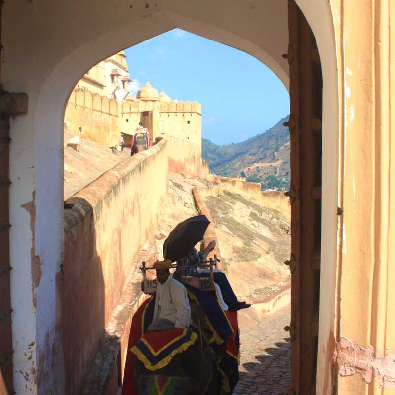 Elephant Ride up Amber Fort