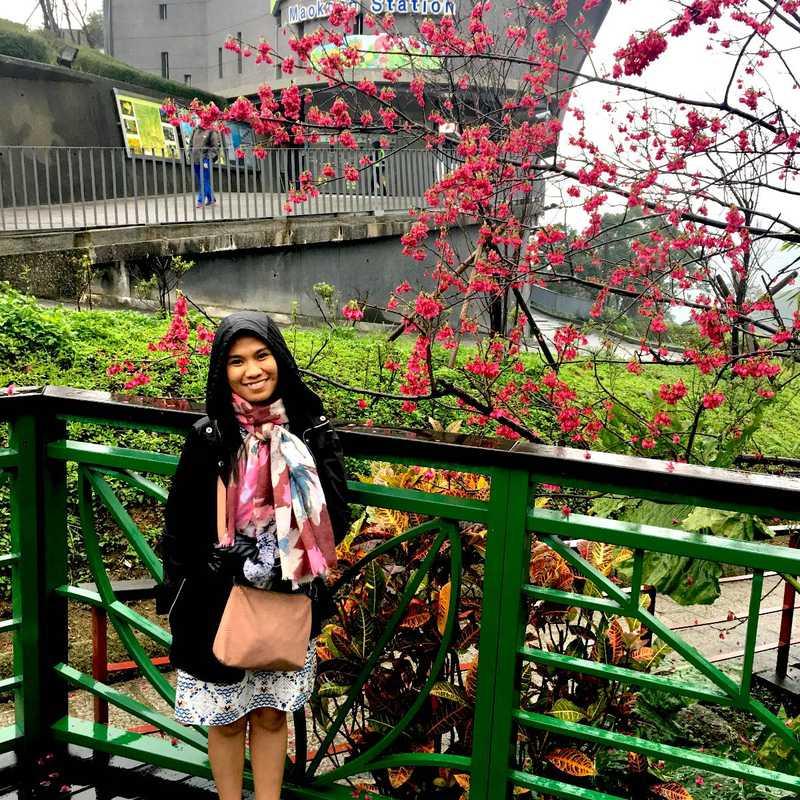 Maokong Gondola Taipei Zoo Station