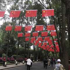 Chengdu Panda Museum - Photos by Real Travelers, Ratings, and Other Practical Information