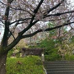 Gion / 祇園
