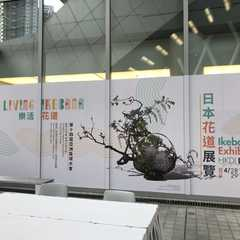 Hong Kong Design Institute - Photos by Real Travelers, Ratings, and Other Practical Information
