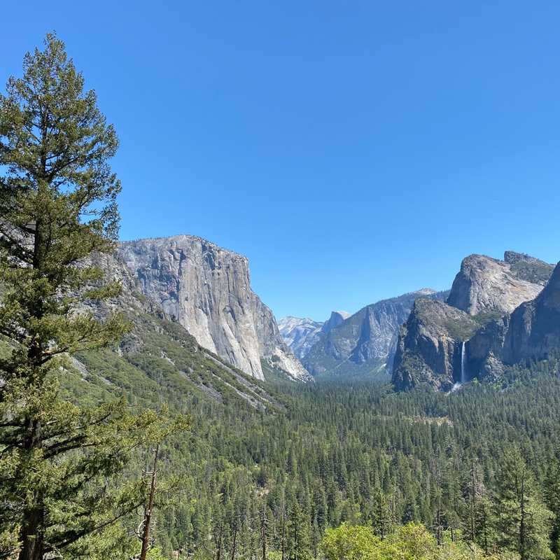 Trip Blog Post by @KittyTreks: Sequoia|Kings Canyon|Yosemite 🇺🇸 | 3 days in Apr/May (itinerary, map & gallery)