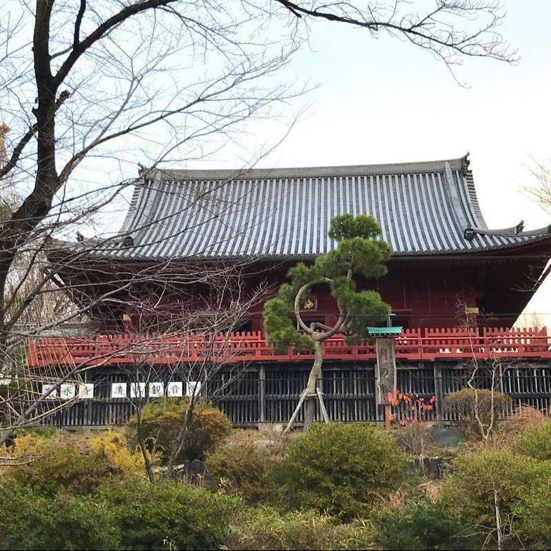 Visiting Ueno Park
