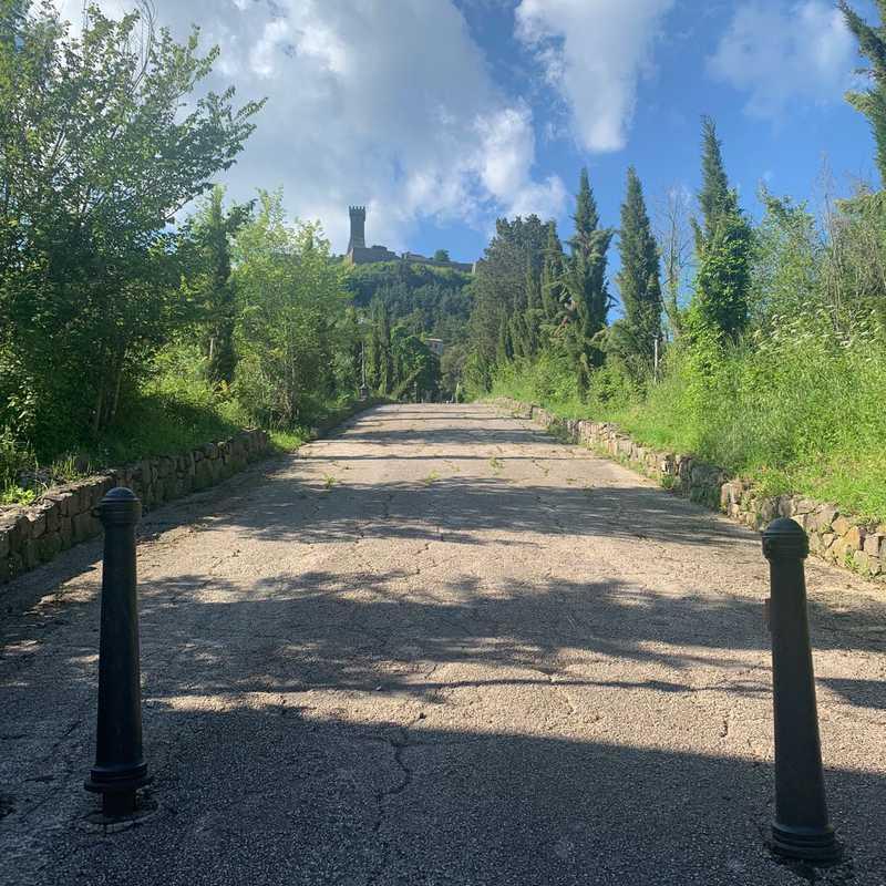Fontana Medicea - Radicofani (si)