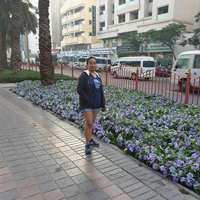 Al Muteena Park