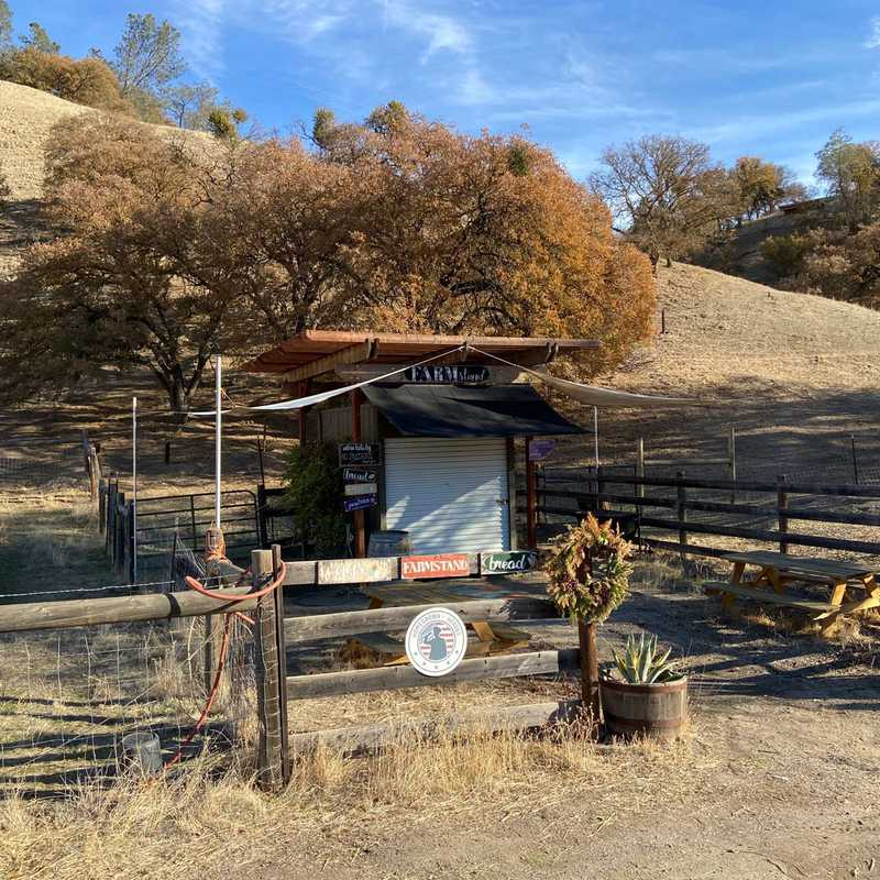 The Farmstand on Indian Valley