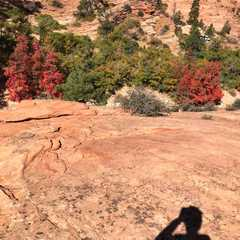 Many Pools Trailhead | POPULAR Trips, Photos, Ratings & Practical Information