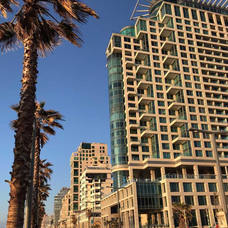 Aviv Beach