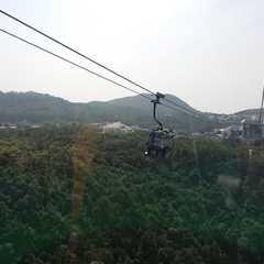 Ngong Ping 360   POPULAR Trips, Photos, Ratings & Practical Information