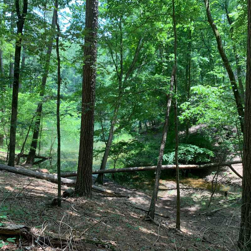 Red Top Mountain State Park - Homestead Trail