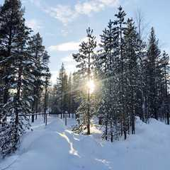 Finland - Selected Hoptale Trips