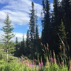 British Columbia - Selected Hoptale Trips