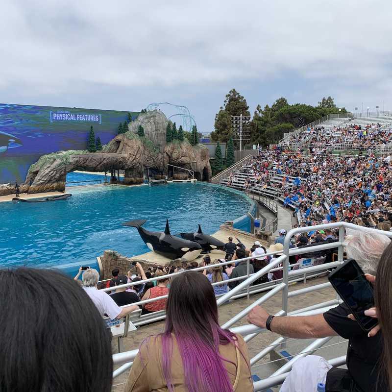 Place / Tourist Attraction: SeaWorld San Diego (San Diego, United States)