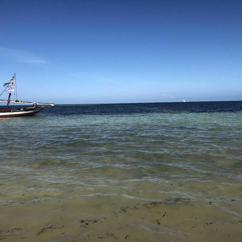 Zanzibar Central and South 2019