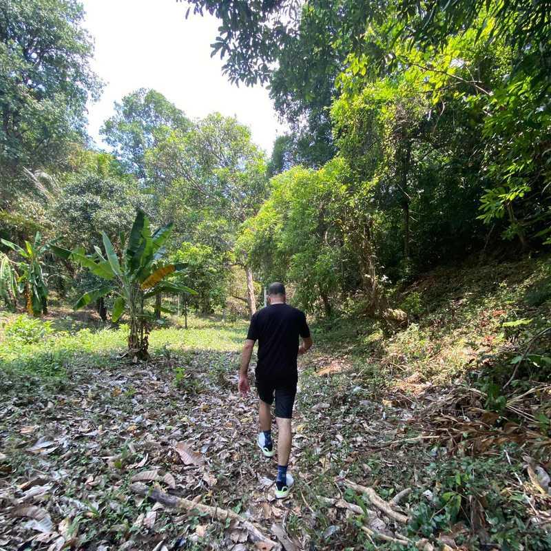 Krabi & Amphoe Mueang Krabi 2021