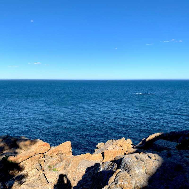Otter Cliff Overlook