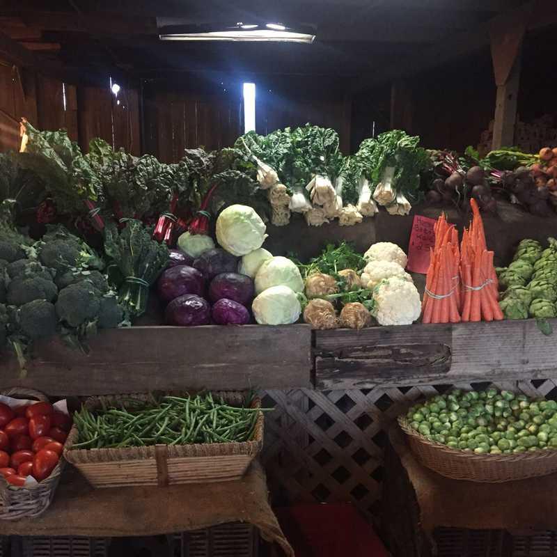 Andreotti Family Farm