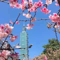 Taipei City - Selected Hoptale Photos