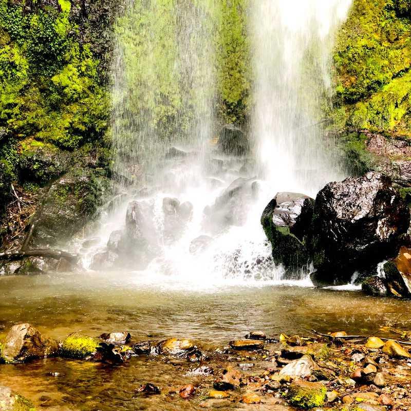 El Tatica Waterfall