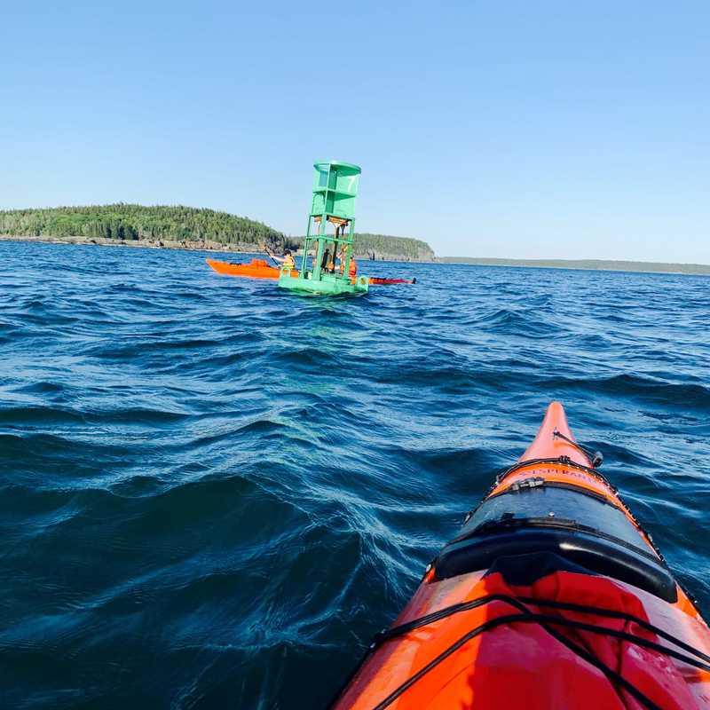 Frenchman Bay Kayaking Tour