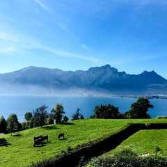 Upper Austria - Selected Hoptale Photos