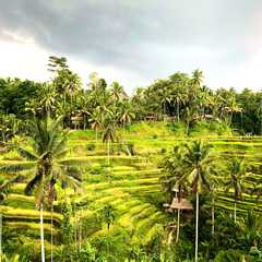 Bali for Instagrammers