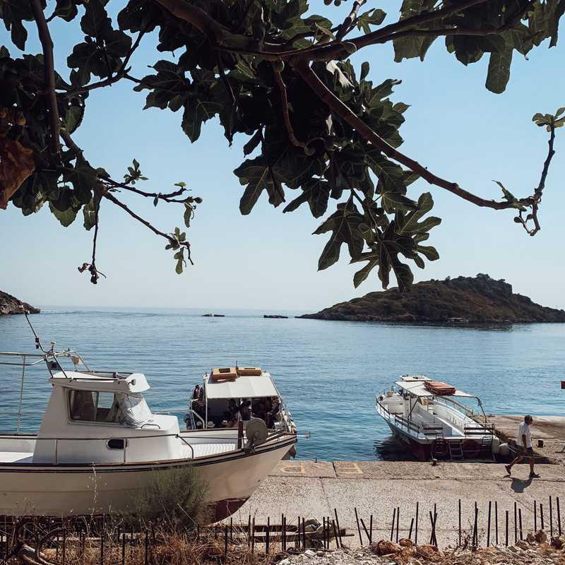 Theodosis Cruises